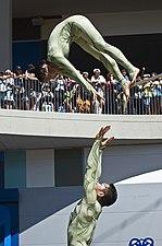 Despertar de la serpiente 2008.jpg
