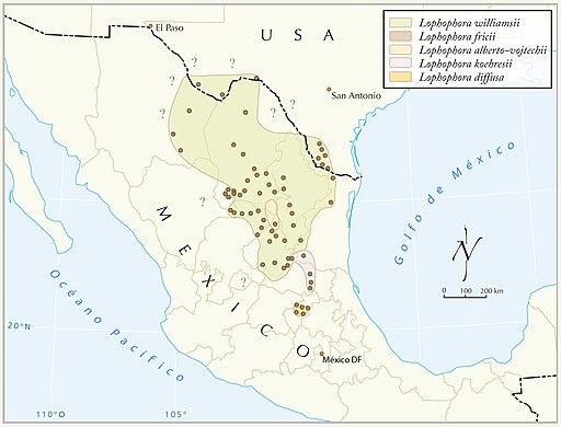 Distribución del Peyote