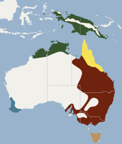 Distribution of Hydromys chrysogaster.png