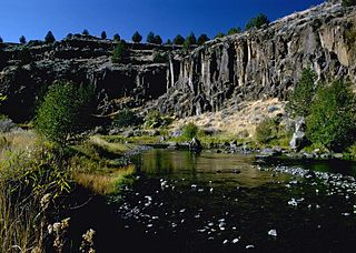Donner und Blitzen River river in the United States of America