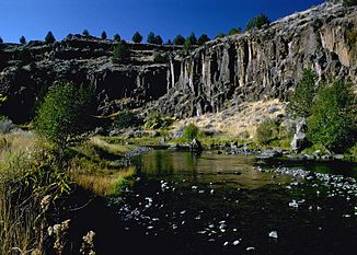 Donner und Blitzen River, Harney County, Oregon.jpg