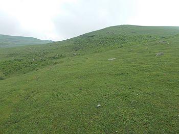 Doudpather upper meadows.jpg