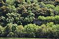 Douro River DSC 0474 (17055758401).jpg