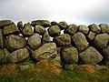 Dry stone wall near Carrick Little - geograph.org.uk - 643417.jpg