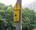 Drzewa w skrajni drogi gdańsk.jpg