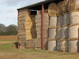 Bedding (animals) - Straw is a commonly used bedding material