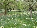 East Molesey, UK - panoramio (20).jpg