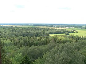 Ebavere Hill.jpg