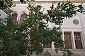 Ehsan Traditional Guest House (20828045600).jpg