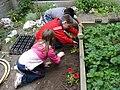 El Ayuntamiento celebra el Día Mundial de la Educación Ambiental 02.jpg