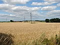 Electricity line across fields - geograph.org.uk - 1425290.jpg