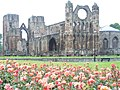 Elgin Cathedral - geograph.org.uk - 885657.jpg