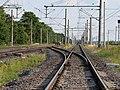 Ende Gelände Nord-Süd-Bahn blockade 22-06-2019 21.jpg