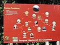 Entrada do Parque Nacional do Caparaó^ - panoramio (1).jpg