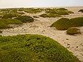 Erongo Region, Namibia - panoramio (2).jpg