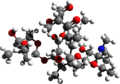 Erythromycin 3d structure.png