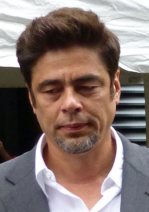 Benicio del Toro - Del Toro at the 2014 Toronto Film Festival