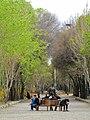 Esfahan , chaharbagh1.jpg