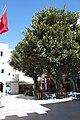 Essaouira - panoramio (170).jpg