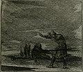 Ethica naturalis, seu, Documenta moralia e variis rerum naturalium proprietatib(us), virtutum vitiorumq(ue) symbolicis imaginibus collecta (1700) (14562906698).jpg