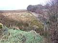 Exmoor by Kinsford - geograph.org.uk - 621854.jpg