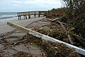 FEMA - 10459 - Photograph by Mark Wolfe taken on 09-07-2004 in Florida.jpg