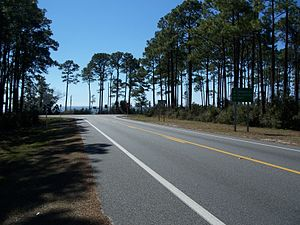 U.S. Route 319 - Image: FL SR SR 65 US 98 319 inter south 01