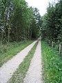 Fahrradweg - Rosenhagen - geo.hlipp.de - 4432.jpg