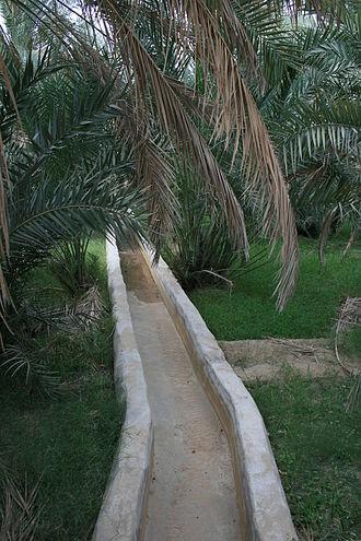Al Ain - The falaj irrigation system at Al Ain Oasis