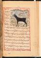 Faraḥ nāmah 066.png