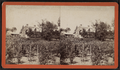Farm-yard, from Robert N. Dennis collection of stereoscopic views.png