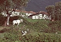 Farm in Albania 2002.jpg