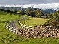 Farm road to Willmead - geograph.org.uk - 256419.jpg