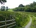 Farmer's Track north-east of Tregaron, Ceredigion - geograph.org.uk - 900059.jpg