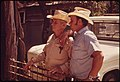 Father and Son Who Own One of the Ranches in the Leakey Texas, and San Antonio Area Watch as Sheep Are Sheared, 05-1973 (3704381726).jpg