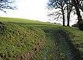 Field Access - geograph.org.uk - 315361.jpg