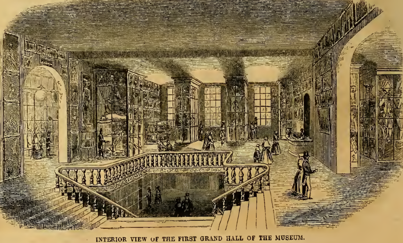 File:First grand hall of Barnum's American Museum, New York City.tiff