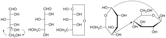 Formula transformation from Fischer to Haworth projection for D-glucose