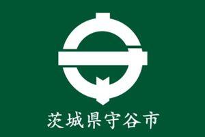 Moriya, Ibaraki - Image: Flag of Moriya Ibaraki