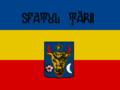 Flag of Sfatul Tarii.png