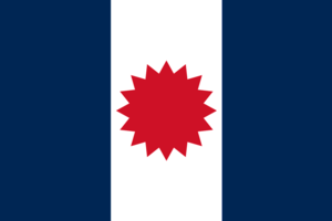 French colonial flags - Image: Flag of Tay Dam