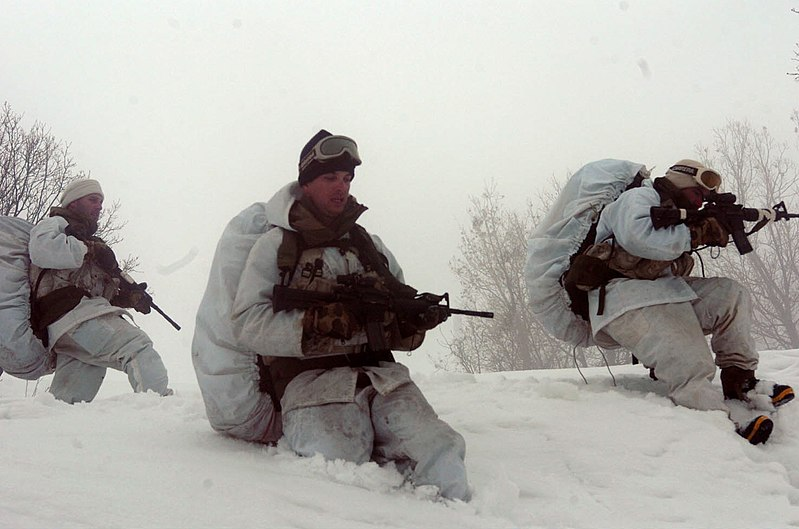 File:Flickr - Israel Defense Forces - Soldiers in Deep Snow.jpg