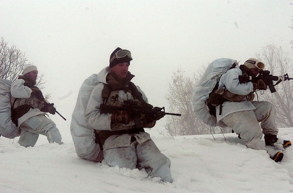 Flickr - Israel Defense Forces - Soldiers in Deep Snow