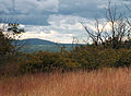Flickr - Nicholas T - Seven Pines Mountain Hike (2).jpg