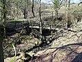 Footbridge Over Dobsons Brook - geograph.org.uk - 1736678.jpg