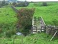 Footbridge on the Pendle Way - geograph.org.uk - 253882.jpg