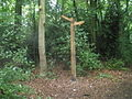 Footpath junction within Rough Wood - geograph.org.uk - 1462273.jpg