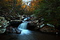 Forest-autumn-creek-waterfalls-trees-foliage-rocks - West Virginia - ForestWander.jpg