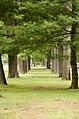 Forest Park, Springfield, MA 01108, USA - panoramio (7).jpg