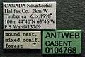 Formica exsectoides casent0104768 label 1.jpg